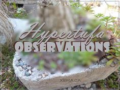 Hypertufa Observations - what works, what doesn't... Hypertufa Gardening | Gardening Mistakes