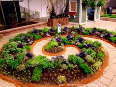 ooOOoo a double spiral would make a very wonderful path in a garden