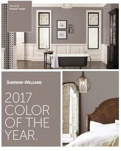 Darren likes for downstairs. I like for master. Poised Taupe Sherwin William's 2017 Color of the Year