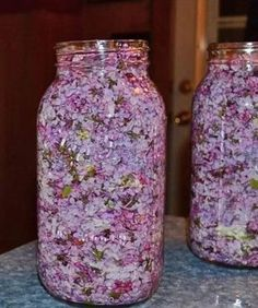 While the lilac blooms, fill the jar with a Пока цветет сирень заполните банку растите… While the lilac blooms, fill the jar with vegetable oil and purple flowers - Herbal Remedies, Natural Remedies, Health Benefits, Health Tips, Beauty Care, Beauty Hacks, Varicose Veins, Vegetable Drinks, Medicinal Plants