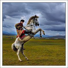 Mongolian Horsemanship (V)