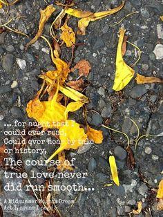 Shakespeare quotes A Midsummer Night's Dream Shakespeare Quotes, William Shakespeare, Woodland Wedding Invitations, Dream Act, Midsummer Nights Dream, True Love, Dream Wedding, House Ideas, Scene