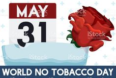 Rose, Ashtray and Reminder Date for World No Tobacco Day