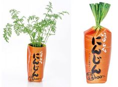 simple but brilliant packaging - grow your own carrots ! Ippon Demo Ninjin Carrot