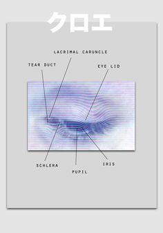 eye-agram