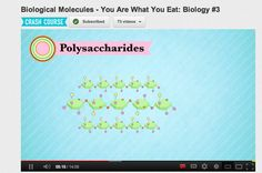 Crash Courses use fun free videos to teach kids about science and history