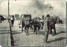 Galata koprusu/1914