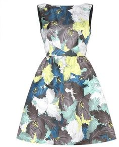 Erdem Kenya Printed Dress