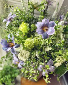 34 vind-ik-leuks, 0 opmerkingen - Floraddiction Workshop (@floraddiction) op Instagram: '紫蝶綠叢舞 . . . . . . . . . . . . .…' Veronica, Workshop, Plants, Instagram, Atelier, Work Shop Garage, Plant, Planets