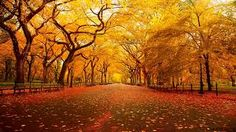 Resultado de imagen para paisajes de otoño