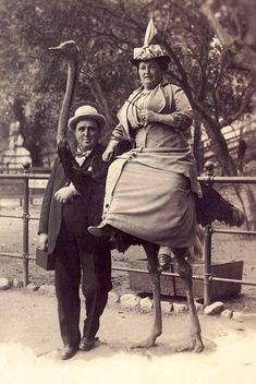 couple with ostrich