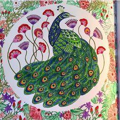 By Doedoecolors44 Arttherapy Mandala Milliemarottafans Coloringbook Coloringforadults Instacolor