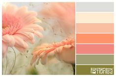 Blushing Blossoms #patternpod #patternpodcolor #color