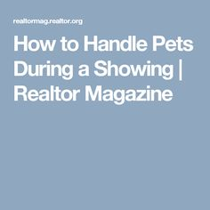 How to Handle Pets During a Showing | Realtor Magazine