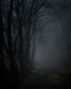 http://forestfullofmysteries.tumblr.com/post/80689472353