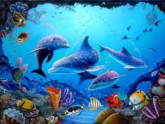 43 best Aquarium Live Wallpaper pictures in the best available resolution. Computer Wallpaper, 3d Wallpaper, Aquarium Live Wallpaper, Underwater Painting, Bottlenose Dolphin, Delphine, Ocean Creatures, Orcas, Tier Fotos