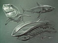 SHARKS YEAH Stylization of bionic form by Aleksandra Kroshechkina, via Behance Biomimicry Architecture, Architecture Concept Drawings, Conceptual Architecture, Organic Architecture, Architecture Design, Conceptual Framework, Industrial Design Sketch, Concept Diagram, Yacht Design