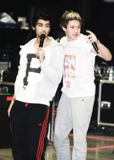 I'm pretty sure Ziall and Larry Stylinson are the official bromances