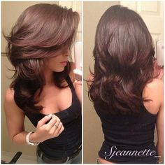 Layers brunette hair