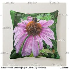 Bumblebee on Eastern purple Coneflower Throw Pillow