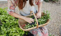 Grow Your Own Medicine: 8 Essential Herbs For Springtime Hero Image