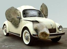 How do you fit an elephant in a VW?