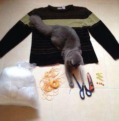 Cama para gatos en dos horas