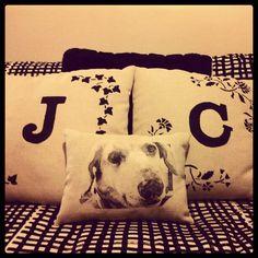 Soñando con Perros: cojines