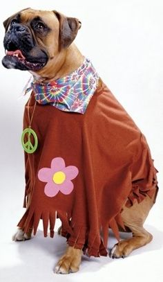 Your dog's trippin' in this groovy costume.  Hippie Dog Costume - Pet Costume  Product #: WC18116HP
