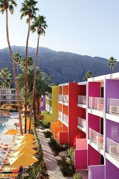 One of Palm Springs' most beloved hotels, the vibrant Saguaro is known for its massive pool, often filled with beautiful people dancing to live music or a DJ set on weekends.