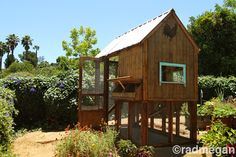 Constructing a Chicken Coop: Part 2 - Radmegan