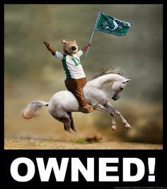 Owned! Go Rider, Saskatchewan Roughriders, Grey Cup, Saskatchewan Canada, Calgary, Green Colors, Football, String Art, Art Ideas