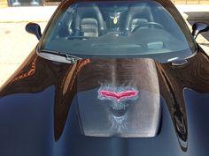 2002 Corvette airbrushed hood