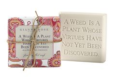 Triple-milled bar soaps from the Gianna Rose Quotable Gardener Collection are scented with crisp Citrus Herb, individually wrapped in a pink decorative design and finished with a jute ribbon.