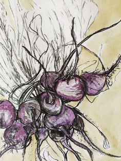 the lovely beet link goes to a great photography site, but nothing to do with beets, lol Botanical Art, Botanical Illustration, Watercolor Illustration, Watercolor Art, Textiles Sketchbook, Sketchbook Ideas, Paper Collage Art, Observational Drawing, Organic Art