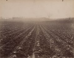 "Eugène Atget Terrain (Limoges) Before 1900 Albumen silver print Approx. 7 1/16 x 8 9/16"" (18 x 21.8 cm)"