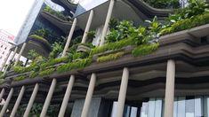 相關圖片 Park Royal Singapore, Suzhou, Thesis, Studio, Architecture, Plants, Image, Arquitetura, Studios