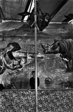 Josef Koudelka - Spain. 1977.