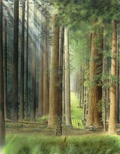Sunday muse: Redwood Reverie from the now as single prints Masters Golf, Redwood Forest, Wuthering Heights, The Next, Bud, Golf Clubs, Golf Courses, Fantasy, Gallery