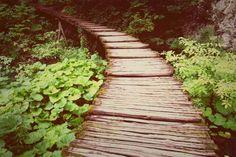 Plitvice lakes! #road #path #forest #croatia