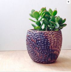 Ceramic Succulent Planter with Carved Triangle by carvedbylisa