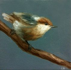 Original Oil Painting Little Nuthatch