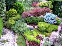 Colorful Design for a small garden!