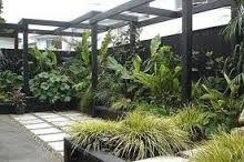 garden courtyards - Google Search