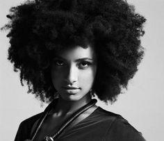 Honeicurls: Black Hair Styles | Natural Hair Styles | Meet My Hair