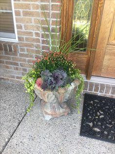 Mums and ornamental cabbage Mum Planters, Ornamental Cabbage, Fall Mums, Autumn, Ornaments, Plants, Fall Season, Fall, Christmas Decorations