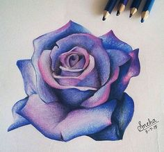 3d Art Drawing, Sketch Painting, Scottish Thistle Tattoo, Rosa Tattoo, Pencil Drawings, Art Drawings, Blue Rose Tattoos, Realistic Rose, Diamond Drawing
