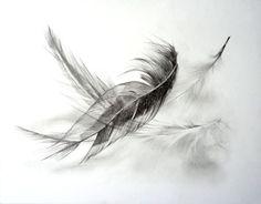 ethereallune:  http://ruthhoppe.deviantart.com/art/Feathers-21143...
