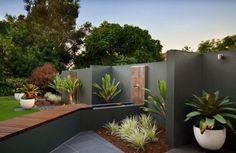aménagement extérieur avec des plantes en tant que déco