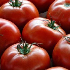 Guía para el cultivo de Tomates: Recolección [7]
